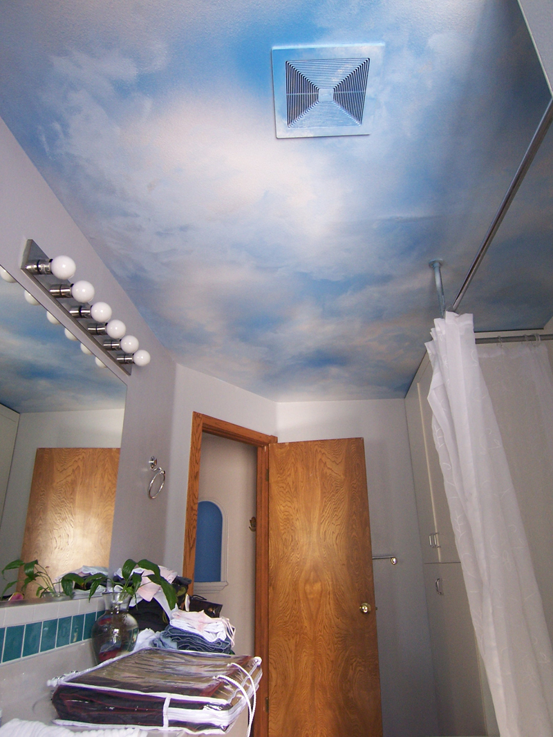Decrative paiinting murals central valley imagine a mural for Ceiling sky mural